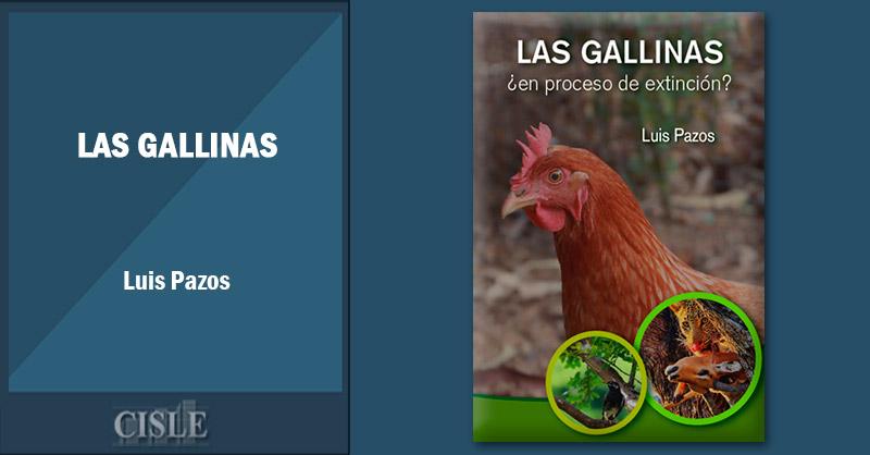 Las gallinas, ¿en peligro de extinción?